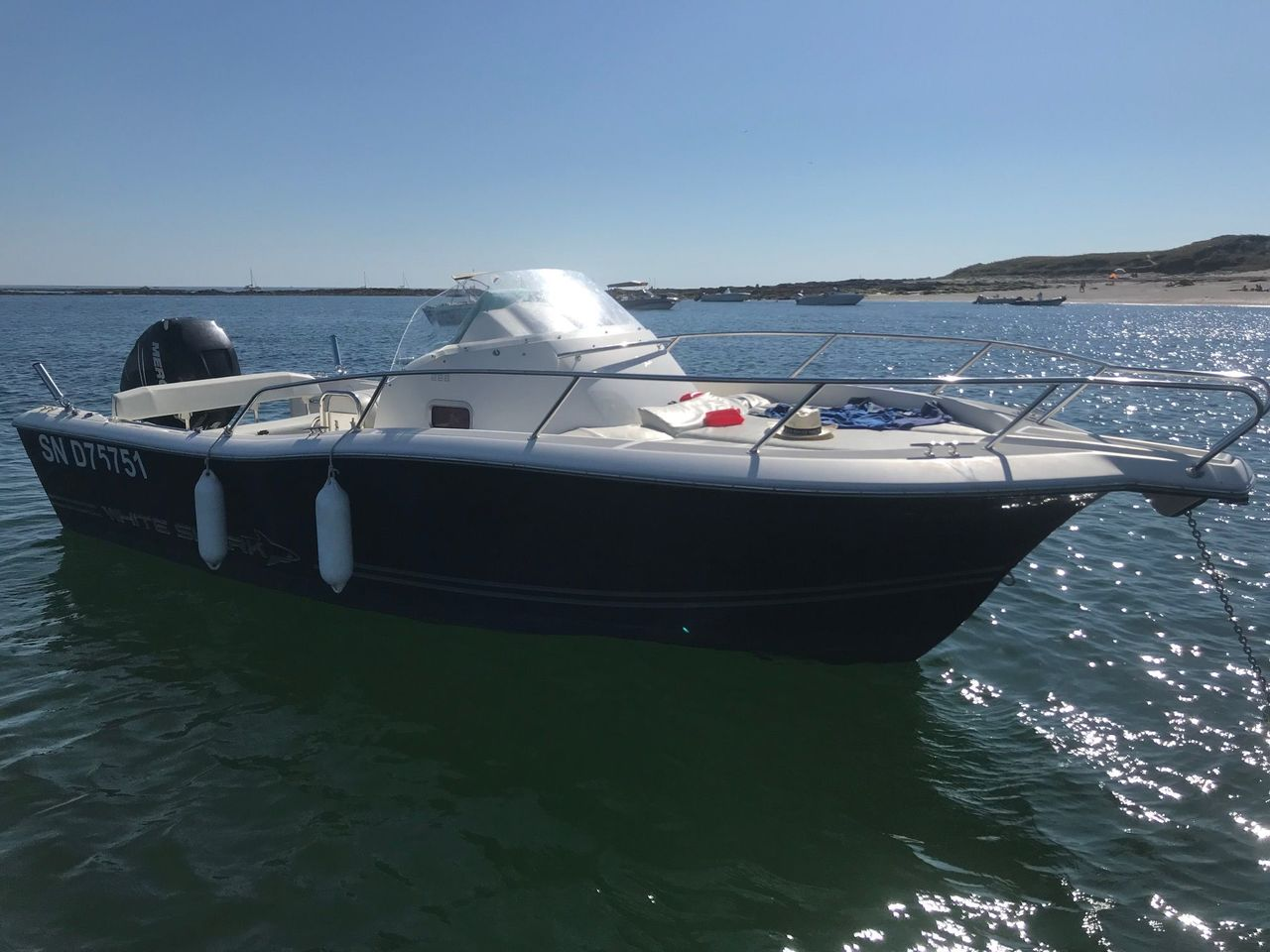 photo - WHITE SHARK 228